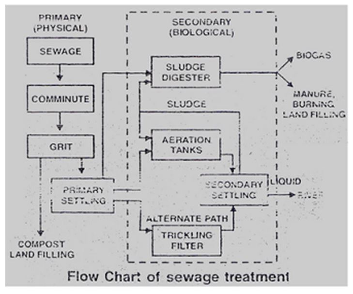 Learn Microbes In Sewage Treatment meaning, concepts